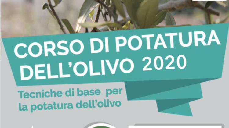 corso-potatura-olivo-2020